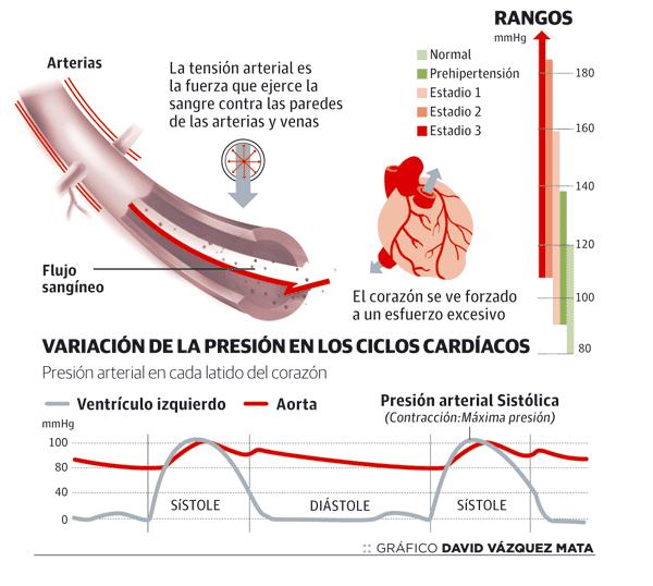 como se produce la presión arterial